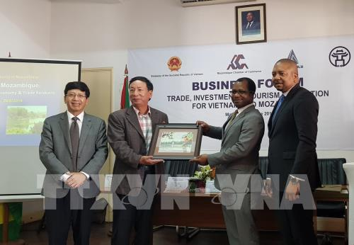 Vietnam, Mozambique promote cooperation in 3 areas