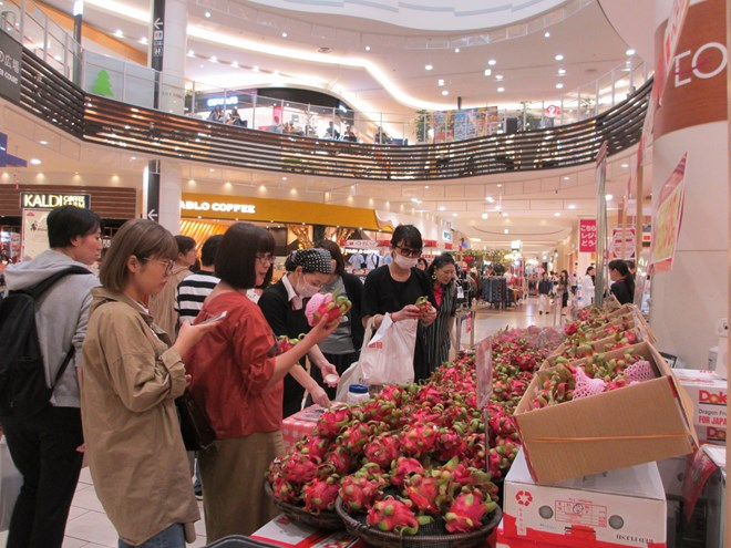 Vietnamese products introduced to Japanese customers