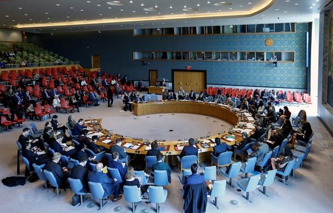 Vietnam quite able to shoulder UNSC non-permanent membership: diplomats
