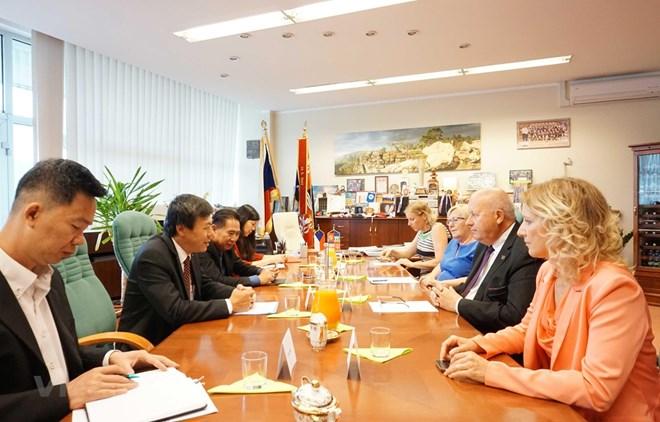 Ambassador works to boost relations between Vietnamese, Czech localities