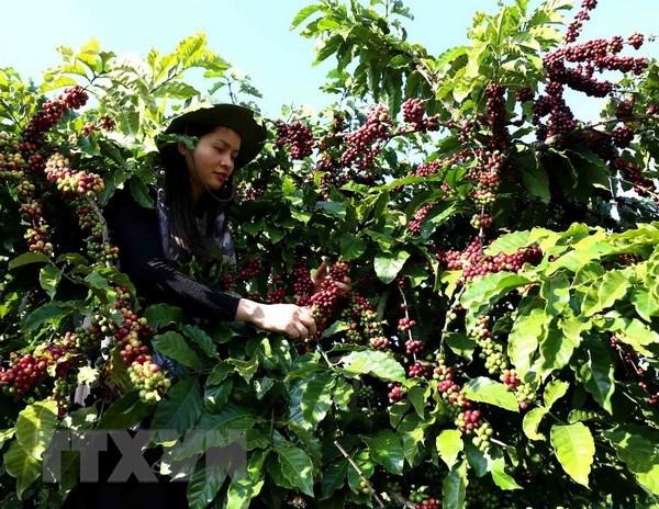 Vietnam records trade deficit of USD1.3 billion in May