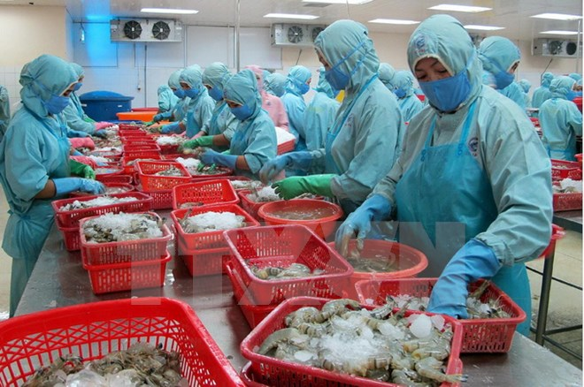 Seafood exports to hit USD5 billion in second half