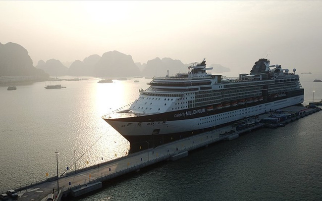 Cruise tourism attracts international tourists to Ha Long bay