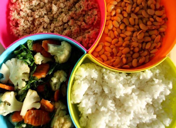 Poor diets damaging children's health, warns UNICEF
