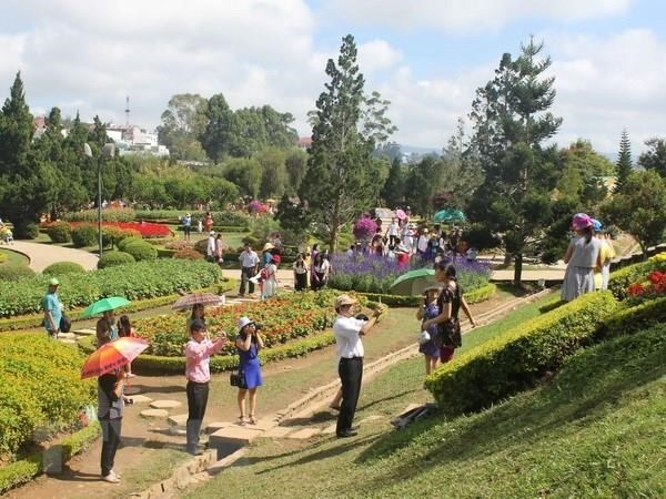 Eighth Da Lat Flower Festival to take place in December