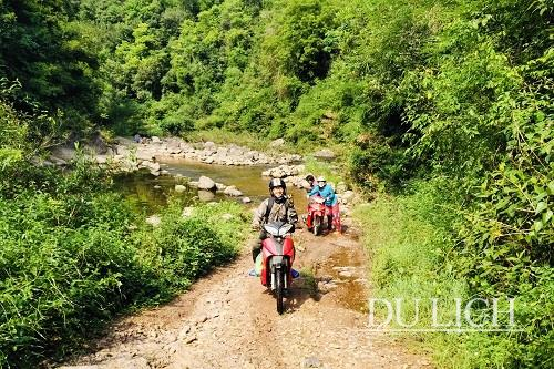 Exploring Ngan Chi Forest in Binh Lieu District