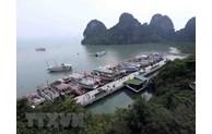 Quang Ninh strives to become regional high-quality services centre