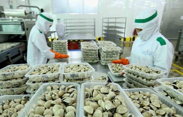 Three more kinds of Vietnamese seafood exported to China