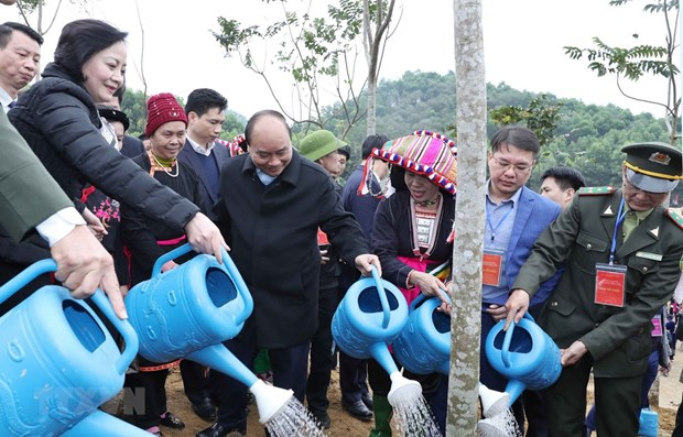 PM launches tree planting campaign in Yen Bai