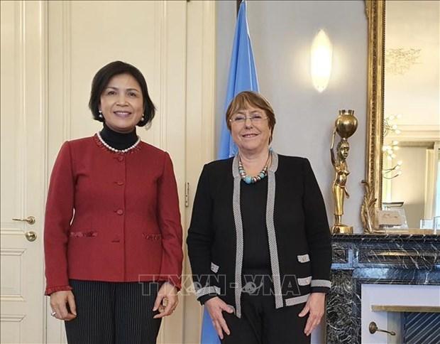 UN High Commissioner lauds Vietnam's human rights achievements