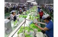 EVFTA opens up new era in EU-Vietnam trade ties: Italian experts
