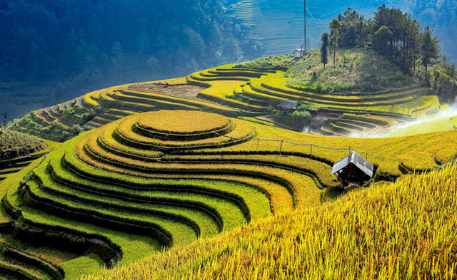 Promoting value of Mu Cang Chai terraced fields association with tourism development