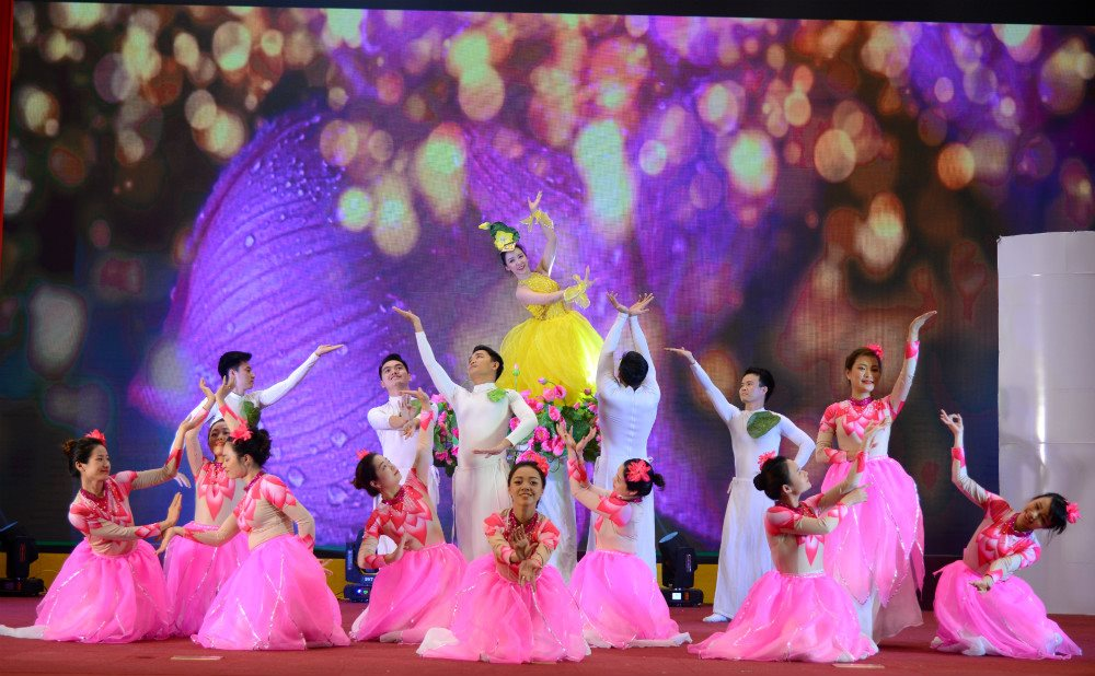 Diverse cultural activities in Hanoi to welcome Party Congresses at all levels