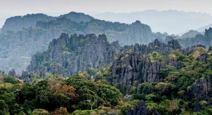 Assisting Laos in compiling dossier on Hin-nam-no National Park for UNESCO's recognition