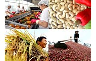 Solutions implemented to boost exports of agricultural products
