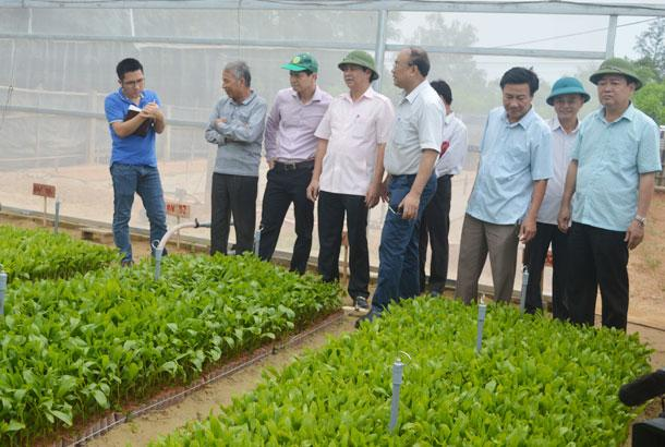 Cam Lo district in central Quang Tri province meets new rural standards