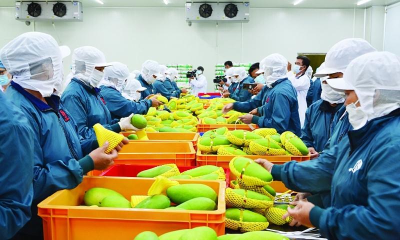 Vietnam records trade surplus of 2.82 billion USD in first quarter
