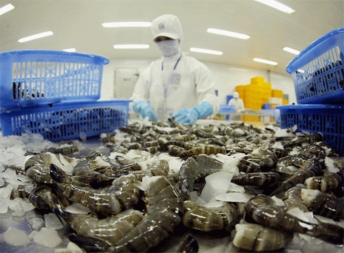 Shrimp export expects continued increase in May