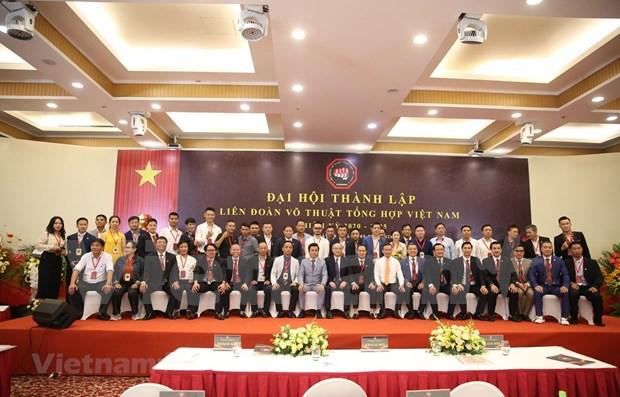 Vietnam Mixed Martial Arts Federation debuts