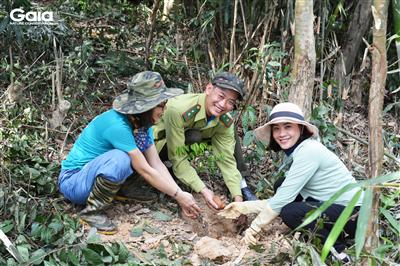 Nearly 2,000 trees planted in Thanh Hoa province