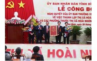 A town in Binh Dinh province established