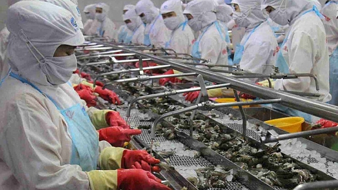 Vietnam sees greater prospects ahead for shrimp exports