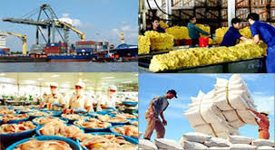 EVFTA expected to provide fresh impetus to national exports