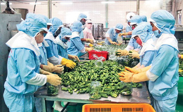Businesses promote agricultural and food product exports to China's Shandong province