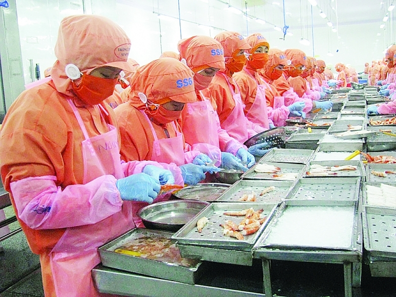 Vietnamese shrimp increasingly appeals to Canadian consumers