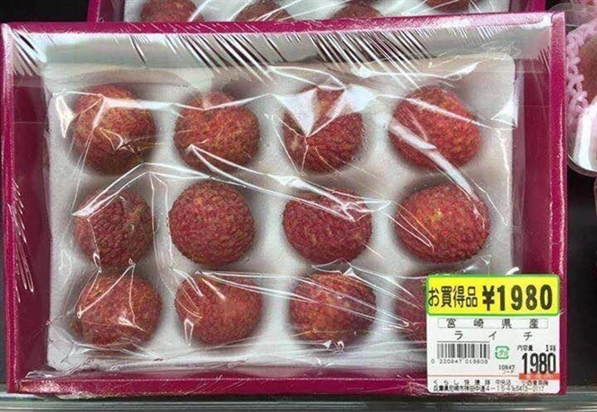 First batch of litchi exported to Japan