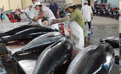 EU to remove import duties on Vietnamese tuna