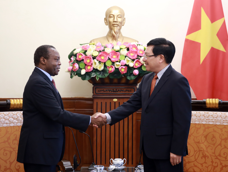 Vietnam provides medical masks for some African countries