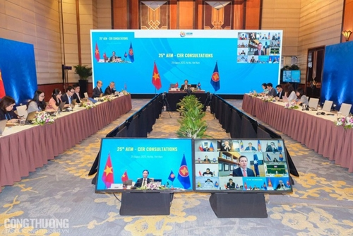 ASEAN economic ministers hold consultation with Australia, New Zealand