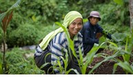 ADB to help boost farm incomes in the Philippines with USD400 million loan