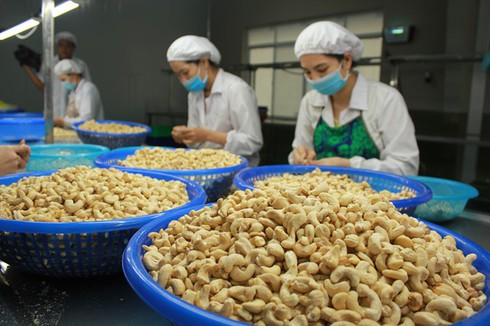 Agricultural products seek to sustain export growth amid COVID-19 fears