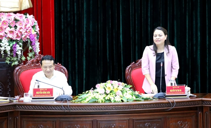 Contributing ideas to draft document submitted to Ninh Binh Party Congress