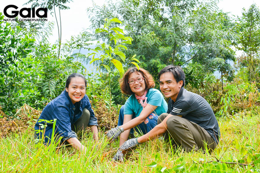 10,000 trees planted in Thanh Hoa to mitigate damages from natural disasters