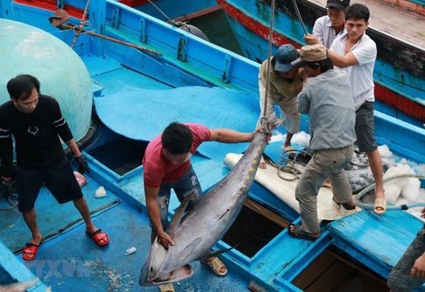 Shrimp, tuna exports to EU see positive signs