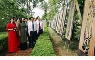 Birth anniversary of great poet Nguyen Du celebrated