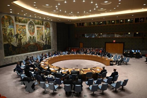 Vietnam welcomes recent progress in Sudan