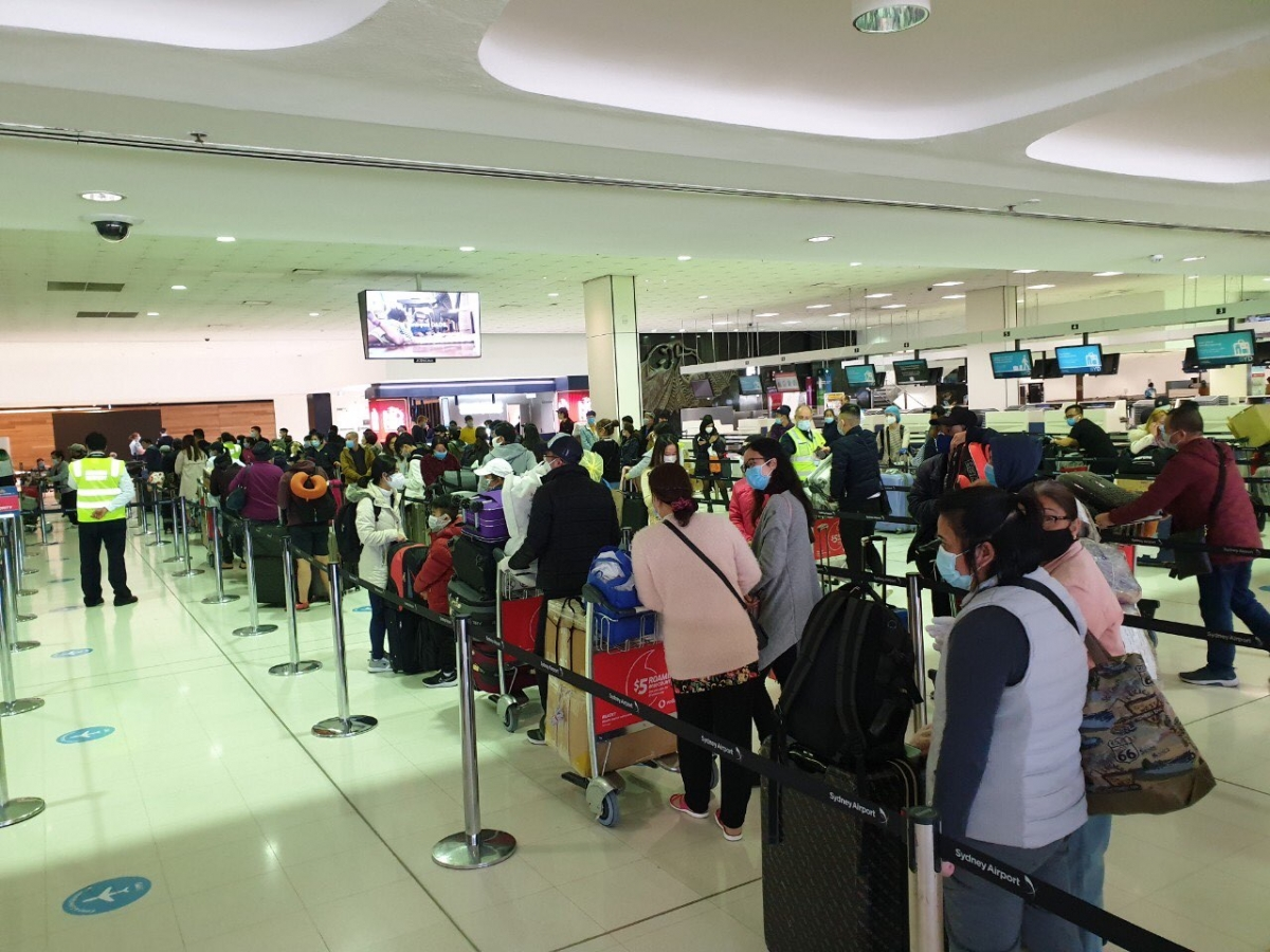 Nearly 270 Vietnamese citizens from Australia, New Zealand brought home safely