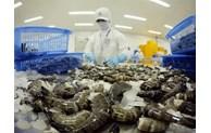 Shrimp exports forecast to reach 3.7 billion USD this year