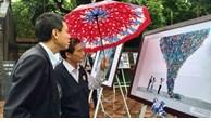 238 artworks on Vietnam on display