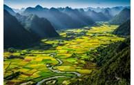 Vietnam among world's top ten beloved countries
