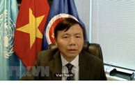 Vietnam backs peace progress led by Afghans: Ambassador