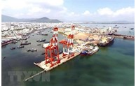Volume of goods via Quy Nhon Port rises over 30%