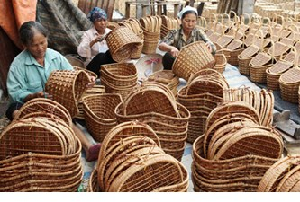 Bamboo industry has huge growth potential