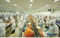 Seafood export expected to rise 10% in 2021