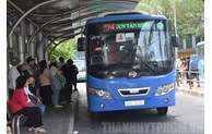 12-17-seater minibuses proposed to be used in HCM City