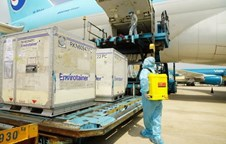 First 117,600 doses of Covid-19 vaccines arrive in Vietnam